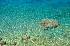 Amazing beach with crystal clear water stock image