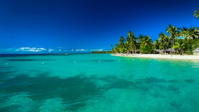 Amazing beach on a tropical island with palm trees and clean water. N stock video