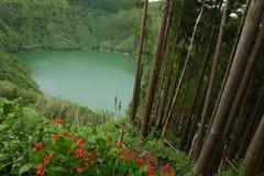 Amazing beautiful landscape view of green lagoon Lagoa do Rasa o Stock Image