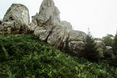 Amazing beautiful landscape view of rocks and forest and sky in. Sunny mountains stock images