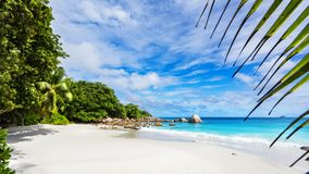 Paradise beach.White sand,turquoise water,palm trees at tropical. Amazing beautiful paradise beach.White sand,turquoise water,palm trees at tropical beach anse Royalty Free Stock Image