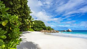 Paradise beach.White sand,turquoise water,palm trees at tropical. Amazing beautiful paradise beach.White sand,turquoise water,palm trees at tropical beach anse Stock Image