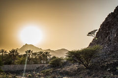 Amazing beautiful sunset in the mountains with palm trees and bushes around Royalty Free Stock Photos
