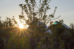 Evening nature royalty free stock photography