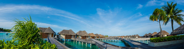 Amazing beautiful tropical beach panorama of water bungalos with bridge near the ocean and palm trees at Maldives Royalty Free Stock Images