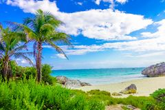 Amazing beautiful view of the beach with turquoise water, some palm trees and green vegetation in a gorgeos day with. Blue sky and white sand close to Mayan Stock Photography