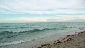 Amazing beauty Atlantic ocean horizon and blue sky. Miami beach. Florida stock footage