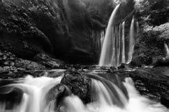 Amazing black & white Beautiful scenery of Tiu Kelep waterfall in senaru, indonesia. stock photos
