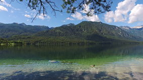 Amazing Bohinj Lake in morning. Duck is swimming in deep clear water with fish. Gorgeous landscape of Julian Alps. Slovenia. stock footage