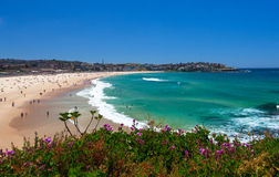 Amazing Bondi Beach in Sydney Royalty Free Stock Images