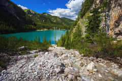 Amazing Braies Lake Royalty Free Stock Photo