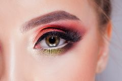 Amazing Bright eye makeup in luxurious scarlet shades. Pink and blue color, colored eyeshadow. Close up royalty free stock image