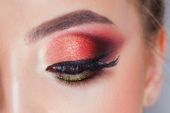 Amazing Bright eye makeup in luxurious scarlet shades. Pink and blue color, colored eyeshadow royalty free stock photo