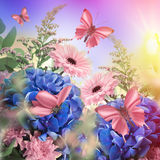 Amazing butterfly fairy of flowers Royalty Free Stock Images