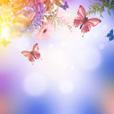 Amazing butterfly fairy of flowers Royalty Free Stock Photography