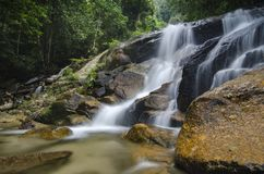 Amazing cascading tropical waterfall. wet and mossy rock, surrounded by green rain forest. Beautiful in nature, amazing cascading tropical waterfall. wet and royalty free stock image