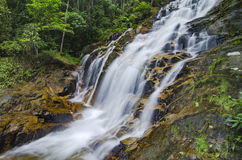 Amazing cascading tropical waterfall. wet and mossy rock, surrounded by green rain forest Royalty Free Stock Image
