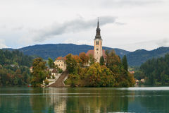 Amazing castle Bled lake. In Slovenia, Europe Stock Images