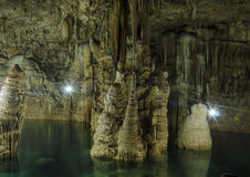 An Amazing Cenote Royalty Free Stock Images