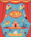 Amazing Circus Show Poster Royalty Free Stock Photography