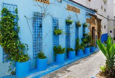 An amazing city in Morocco, Rabat, Kasbah des Oudaia, narrow streets, blue walls,. Narrow passage - street, near each window a pot of flowers Stock Images