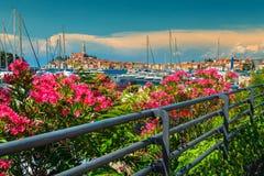 Amazing cityscape with Rovinj old town, Istria region, Croatia, Europe stock photos