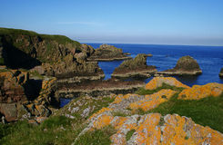 Amazing cliffs near Slains castle, Scotland Royalty Free Stock Images