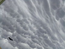 Amazing. Clouds that shocked Royalty Free Stock Images