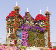 Amazing colorful Castle of flowers in the Miracle Garden park, Dubai. Amazing colorful Castle on the hill of flowers in the Miracle Garden park, Dubai, United stock image