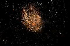 Amazing colorful fireworks on a night sky background Royalty Free Stock Image