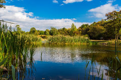 Amazing colorful landscape with lake and park in lviv Royalty Free Stock Image