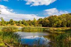 Amazing colorful landscape with lake and park in lviv Stock Photography