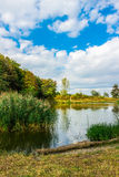 Amazing colorful landscape with lake and park in lviv Royalty Free Stock Photo
