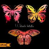 Amazing colorful set with butterflies painted Royalty Free Stock Image