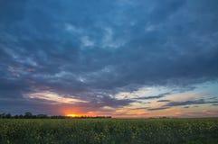 Amazing colorful sunset Stock Image
