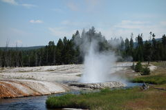Amazing colors surrounding a geyser at yellowstone park Stock Photos
