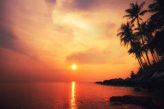 Amazing colors of tropical sunset. Thailand Royalty Free Stock Photos