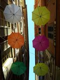 An amazing coloured umbrellas decoration over the city of Genova. In spring days for the Euroflora event royalty free stock images