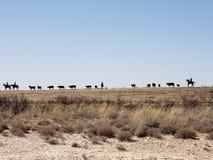Amazing Cowboy sculpture stock image