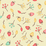 Amazing cute seamless vintage colorful berry pattern Stock Images