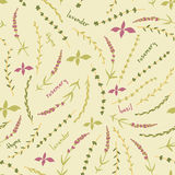 Amazing cute seamless vintage colorful floral herbs pattern Royalty Free Stock Image
