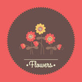 Amazing cute seamless vintage colorful floral Stock Photos