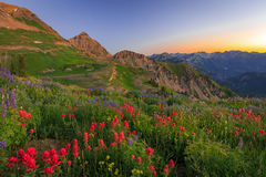 Free Amazing Dawn Landscape In The Wasatch Mountains, Utah. Royalty Free Stock Images - 74396809