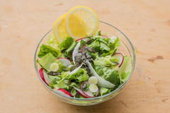 Amazing and delicious healthy vegetarian lettuce salad, with red and white radish, spring garlic,  lemon slices and basil. Mediterranean delicious healthy Royalty Free Stock Photo
