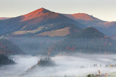 Amazing dense fog in the Carpathian Mountains. Stock Images