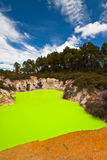 Amazing Devils Bath - New Zealand Stock Images