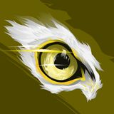 An amazing eagle eye royalty free illustration