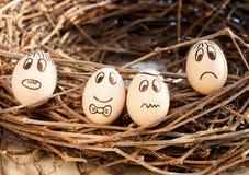 Amazing eggs Stock Photography
