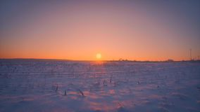 Amazing empty winter field illuminating at beautiful yellow sunset or sunrise tracking shot. Steadicam establish shot bright clean white snow steppe in stock footage