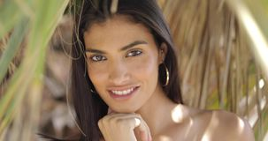 Amazing ethnic woman posing at camera. Portrait of young ethnic brunette holding hands on face while posing and looking sensually at camera smiling slightly stock video
